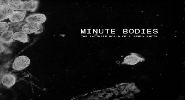 Minute Bodies, The Intimate World of Percy Smith