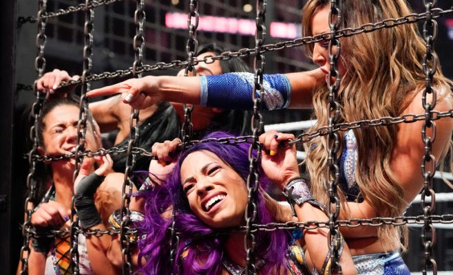 Elimination Chamber Women's Tag Team